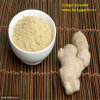 Organically Grown Ginger Extract Powder