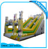 Inflatable Slide for Sale/ Adult Inflatable Slide for Sale