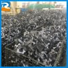 Stamping Part Auto Part for Custom Processing Service