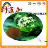 100% Pure 0.8% Eleutherosides Siberian Ginseng P. E.
