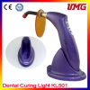 High Quality Medical Equipment Dental Light Cure Machine