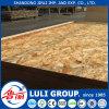Good Quality OSB/OSB3/OSB2 From China Luli Group /OSB Manufacturer