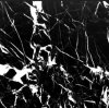 Black New Nero Marquina Marble Slab for Flooring /Walling