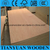 12mm Commercial Laminated Plywood Sheet