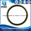 Shafte Dkb Oil Seal with Metal Cover