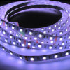 High Quality 30LEDs/M SMD5050 RGB LED Strip Rope Light with Ce, RoHS