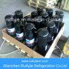 R404/Copeland Emerson Piston Compressor /Zr42k3e-Pfj-522