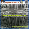 Hot Sale Galvanized knitted Hinged Fence/ Field Fence