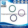 Colorful High Quality NBR Rubber O Ring