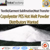 Copolyester Pes Hot Melt Powder for Textile