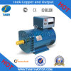 Fast Delivery Single Phase St Generator (ST-2)