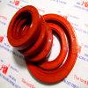 NBR FKM Tc Oil Seals /Seal Rings Manufacturer
