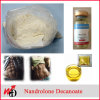 Anabolic Injecting Steroids Nandrolon-E Powder Nandrolon-E Base
