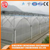 2017 Low Cost Multi Span Plastic Tunnel Green House