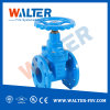 Resilient Seated Non-Rising Stem Gate Valve