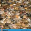 Mixed Color Garden Pebbles for Sale
