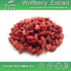 High Quality Goji Berry Extract 20% 30% 40% 50% Polysaccharides