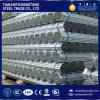 Big Diameter Pre Galvanized Steel Pipe