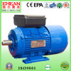 Ml Series High Torque Small Electric Motors