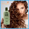Ginger Keratin Growth Hair Care Shampoo