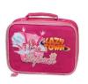 OEM Lunch Cooler Bag (DX-L1524)