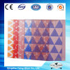 4mm/5mm/6mm Decorative Glass / Designed Glass / Silk Screen Glass / Printed Glass