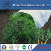 Polypropylene Agriculture Non Woven Fabric with UV in China