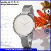 Waterproof Watch Alloy Watch for Women Wrist Watch (Wy-109C)