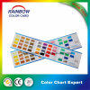 Professional Custom Coating Printing Color Card