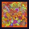 High Quality Custom Digital Printing Silk Scarf (F13- 0027)