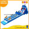 Dolphin Long Inflatable Water Slide for Water Park Game (AQ01731)