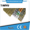 21 Degree Casing Head Strip Collated Nails