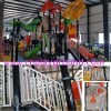 New Playground for Amusement Park CE Certified (HK-102101)