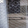 Hexagonal Hole Shape Hexagonal Wire Netting