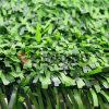 Home Garden Decoration Artificial Plastic Leaf Fence