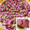 Organic Rose Powder (500kg Stocks)