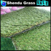 Synthetic Grass 25mm with Life Guarantee 5 Years