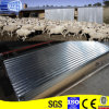 Sgch Fence & Roof Corrugated Galvanized Steel Sheet
