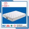 5 Star Hotel Mattress High Quality with Foam Encased Spring
