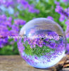 Clear Crystal Ball Centerpieces & Decorative Clear Glass Balls