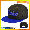 Melton Wool 3D Embroidery Snapback Hats Sn-0065