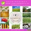 Good Quality Insecticide Pyridaphenthion (95%TC, 20%EC, 60%EC)