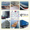 Fastest Consolidate Shipping Logistics Management From China to Middle East