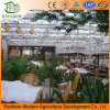 Ecological Restaurant Glass Greenhouse Used Commercial Greenhouse