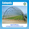 Low Cost Single Span Plastic Film Agricultural Tunnel Greenhouse