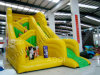 Inflatable Slide (AQ966)