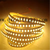 Ultrabright 0.5W Per LED, 50-55lm Per LED, 12V/24V 5630 LED Strip