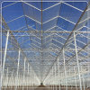 Tempered Opaque Diffuse Glass for Venlo Glass Greenhouse
