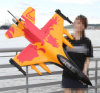 Big Scale Airplane Model with Brushless Motor