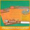 Own Design Wholesale Catalog (BLF-F088)